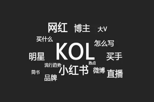 抖音KOL是什么,KOL推广有什么优势?